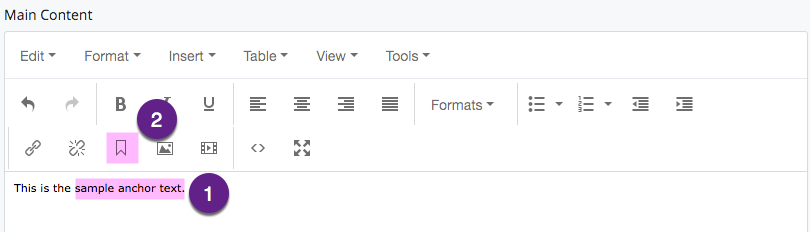 This is the anchor button in the WYSIWYG editor.
