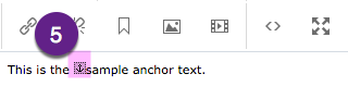 This is the anchor icon in the WYSIWYG editor.